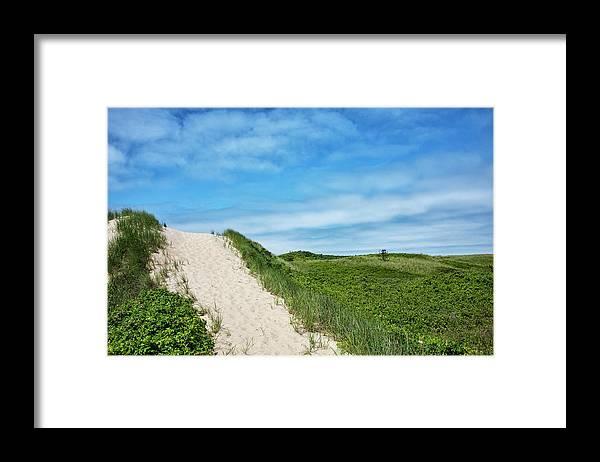 Martha's Vineyard Dunes Framed Print featuring the photograph Dunes On Martha's Vineyard by Brendan Reals