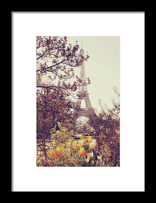 Treetop Framed Print featuring the photograph Eiffel Tower, Paris by Liz Rusby