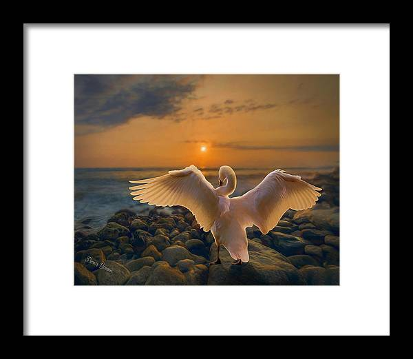 Swan Framed Print featuring the painting End Of Day by Dawn Gemme