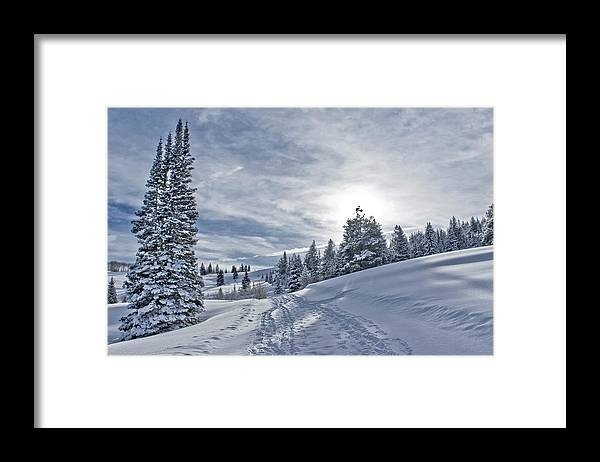 Shadow Framed Print featuring the photograph Escape From Beaver Creek by Rauch Jonathan Photographies