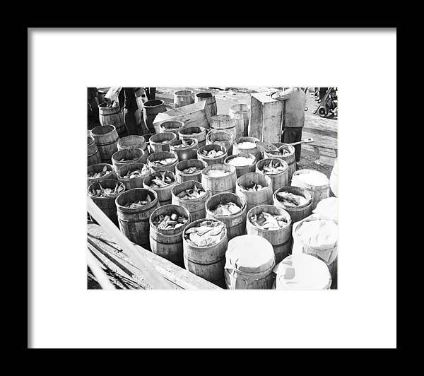 Fulton Fish Market Framed Print featuring the photograph Fish For Sale In Barrels At The Fulton by Bert Morgan