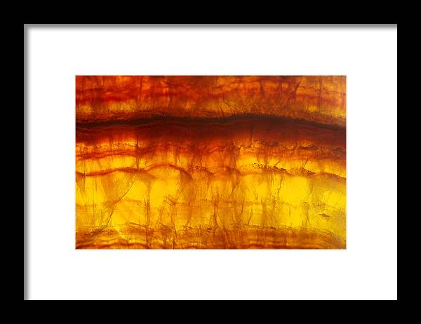 Mineral Framed Print featuring the photograph Flourite by David Wasserman