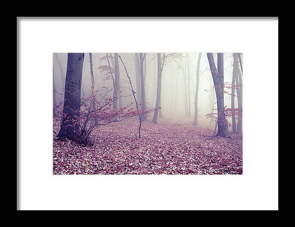 Spooky Framed Print featuring the photograph Fog by Floriana