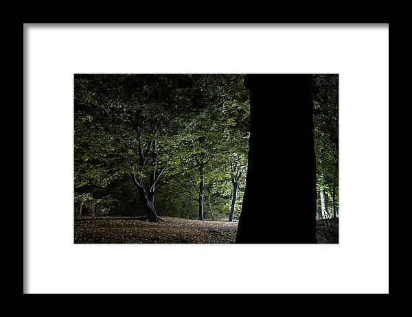 Gothic Style Framed Print featuring the photograph Forest Glow Trees Lit At Night by Peskymonkey