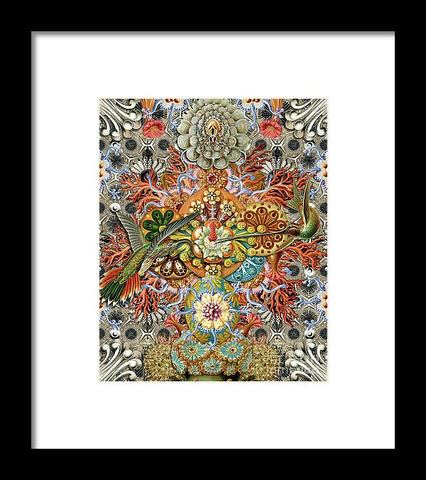 Hummingbird Framed Print featuring the digital art Forms of Nature #1 by Kenneth Rougeau