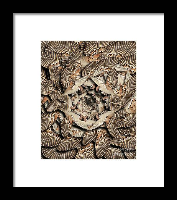 Bird Framed Print featuring the digital art Forms of Nature #16 by Kenneth Rougeau