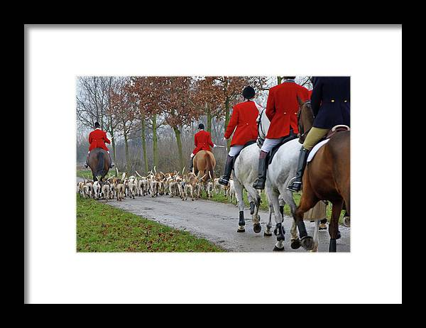 Horse Framed Print featuring the photograph Fox Hunt 1 by Lya cattel