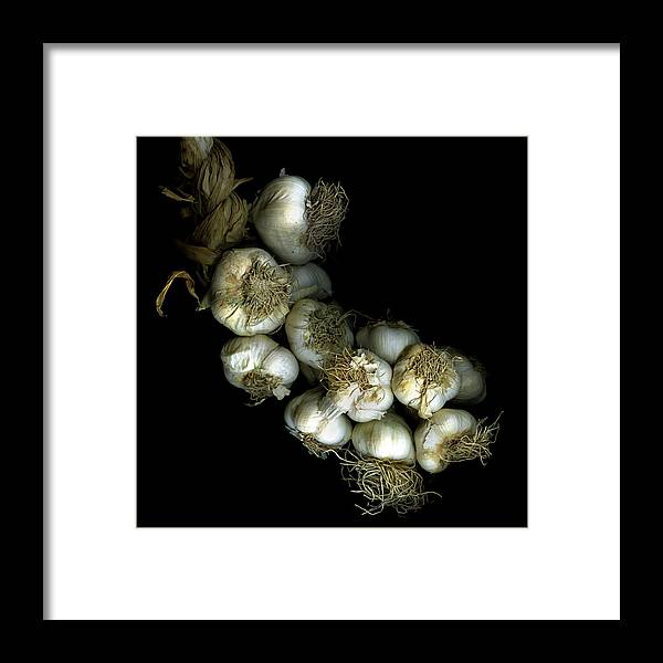 Black Background Framed Print featuring the photograph French Garlic by Photograph By Magda Indigo
