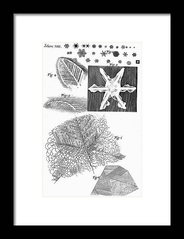 Material Framed Print featuring the drawing Frozen Materials Viewed By English by Print Collector
