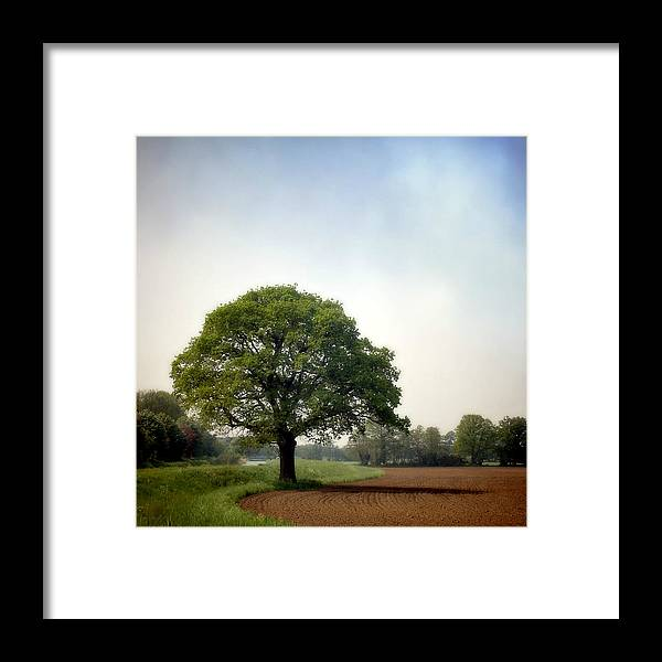 Scenics Framed Print featuring the photograph Garden Of Delights by Bob Van Den Berg Photography