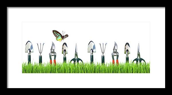 Grass Framed Print featuring the photograph Garden Tools by Liliboas