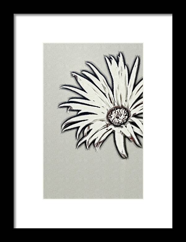 Rockville Framed Print featuring the photograph Gerbera Flower Shape by Maria Mosolova