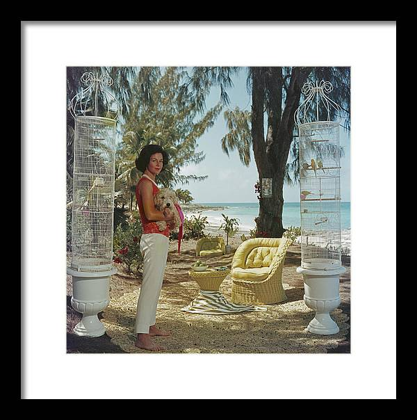 Pets Framed Print featuring the photograph Gloria Schiff by Slim Aarons