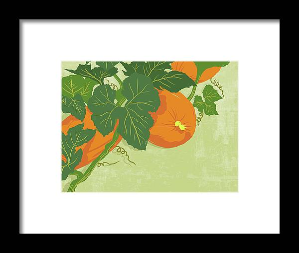 Part Of A Series Framed Print featuring the digital art Graphic Illustration Of Pumpkins by Don Bishop