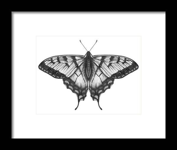 Art Framed Print featuring the digital art Graphite Illustration Of A Beautiful by Ranplett