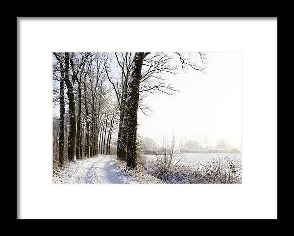 Tranquility Framed Print featuring the photograph Half Black, Half White by Bob Van Den Berg Photography
