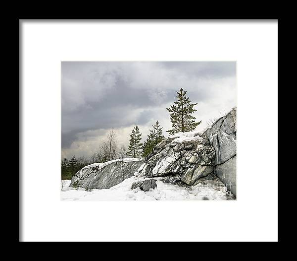 Forest Framed Print featuring the photograph Harsh Northern Misty Landscape by Anton Kudelin