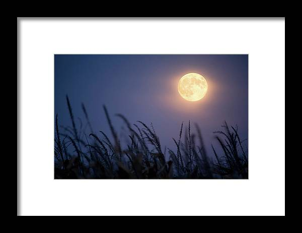 Sky Framed Print featuring the photograph Harvest Moon by Jimkruger