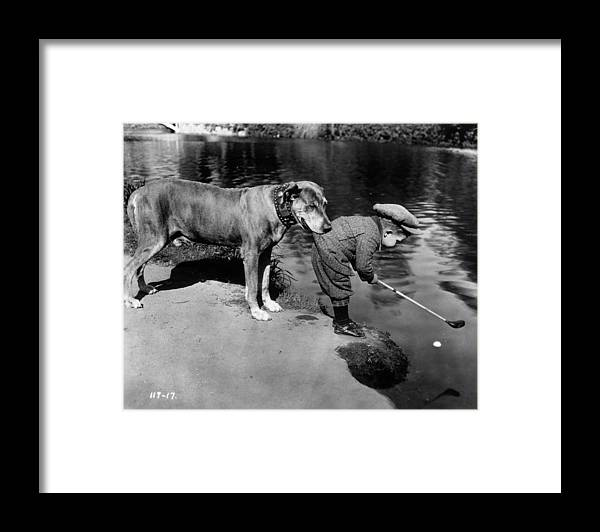 Recreational Pursuit Framed Print featuring the photograph Helpful Dog by General Photographic Agency