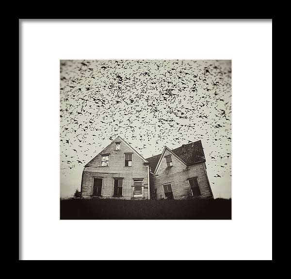 Spooky Framed Print featuring the photograph Home Of Murmuration by Shaunl