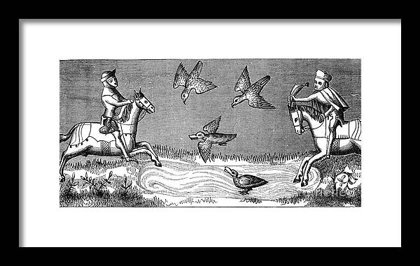 Horse Framed Print featuring the drawing How To Bathe A New Falcon, 14th Century by Print Collector