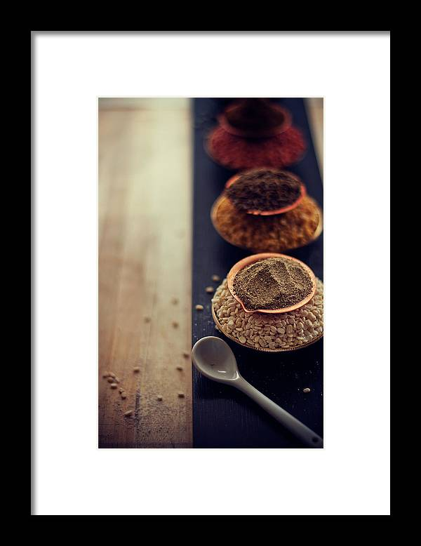 Spoon Framed Print featuring the photograph Indian Spice by Shovonakar