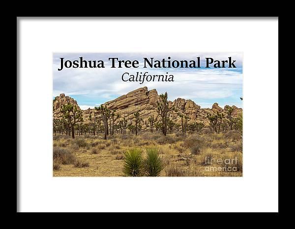 Joshua Tree National Park Framed Print featuring the photograph Joshua Tree National Park, California 03 by G Matthew Laughton