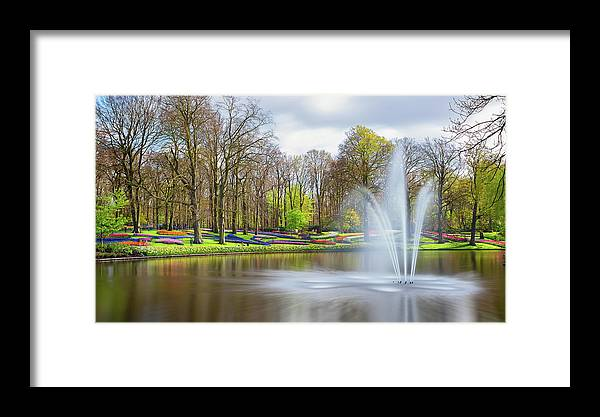 Flowers Framed Print featuring the photograph Keukenhof Tulip Garden Holland by Nathan Bush