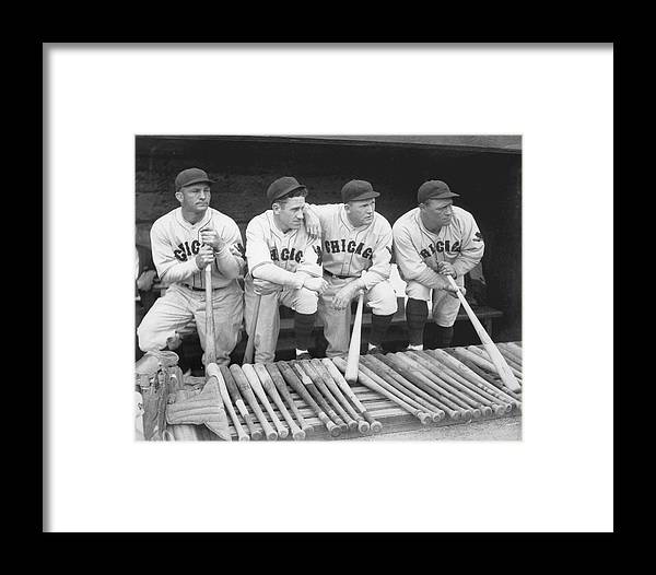 People Framed Print featuring the photograph Members Of The Chicago Cubs by Chicago History Museum