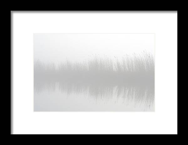 Scenics Framed Print featuring the photograph Misty Morning At The Riverside by Marceltb