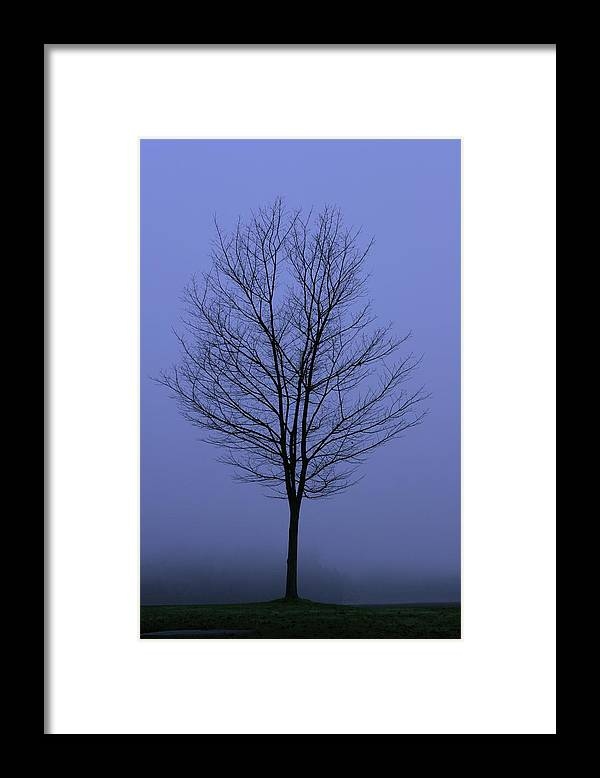 November Framed Print featuring the photograph Moody Blue November Day by Zennie