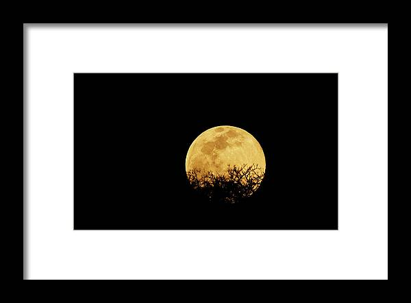 Horror Framed Print featuring the photograph Moon Rise by Rollingearth