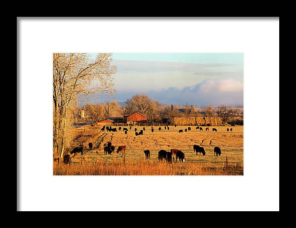 Scenics Framed Print featuring the photograph Morning Farm Scene by Beklaus