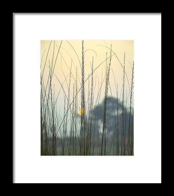 Landscape Framed Print featuring the photograph morning Star by Ravi Bhardwaj