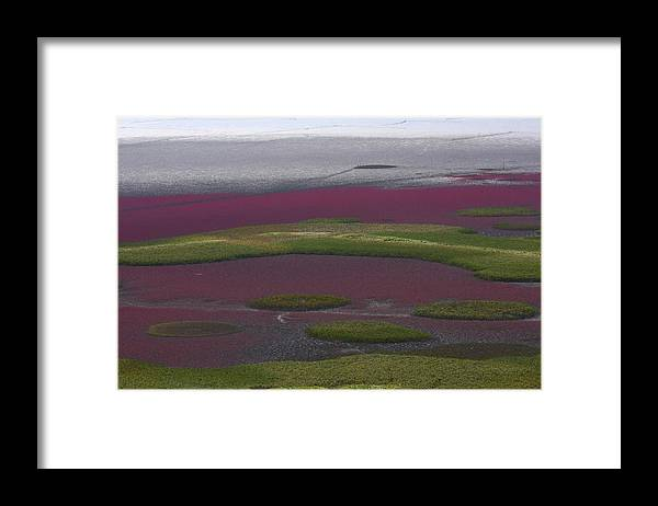 Scenics Framed Print featuring the photograph Mud Flats At Suncheon Bay by Photography By Simon Bond