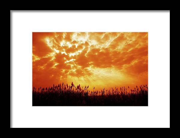 Orange Color Framed Print featuring the photograph Orange Tinted Sky Illustrating by Tommyix