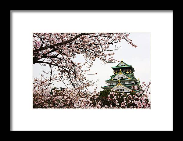 Osaka Castle With Cherry Blossoms Framed Print By John Banagan