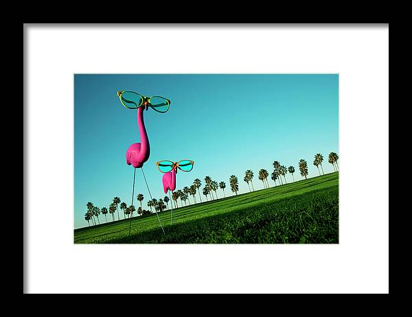 Artificial Framed Print featuring the photograph Plastic Pink Flamingos On A Green Lawn by Skodonnell