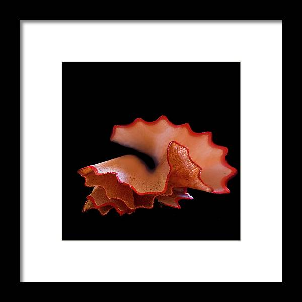 Black Background Framed Print featuring the photograph Prepared by Mse