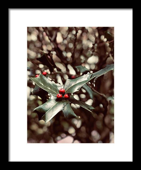 Holly Berry Framed Print featuring the digital art Red 3 by Sharon Green