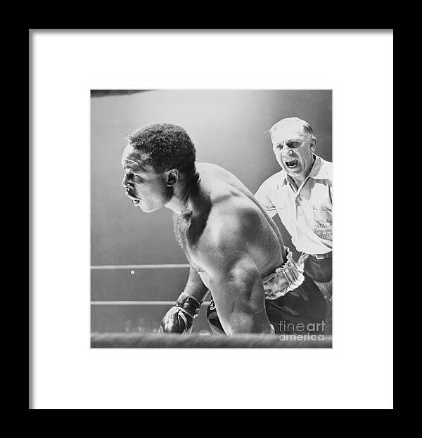 Mature Adult Framed Print featuring the photograph Referee Counting As Boxer Archie Moore by Bettmann