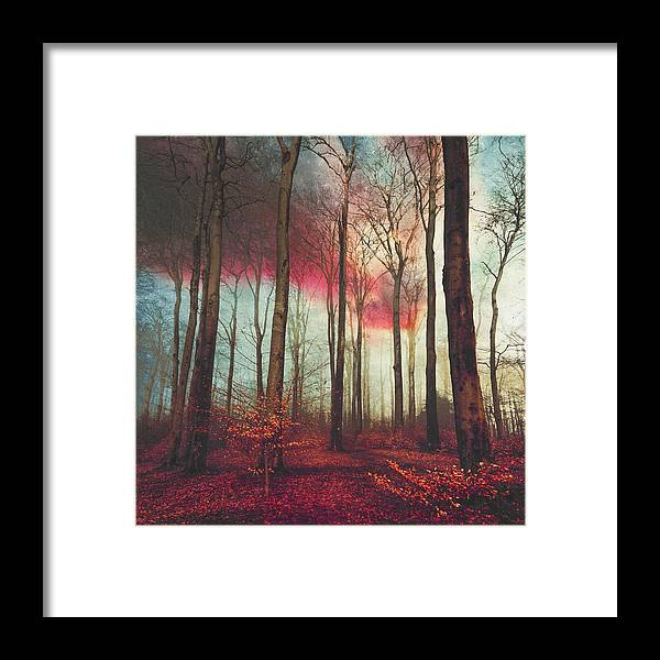 Forest Framed Print featuring the photograph Ruby Red Evening by Dirk Wuestenhagen