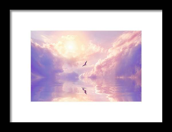 Fairy Tale Framed Print featuring the photograph Seagull And Violet Clouds by Jane Khomi