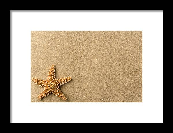 Empty Framed Print featuring the photograph Seashell - Starfish On Beach by Flamingpumpkin