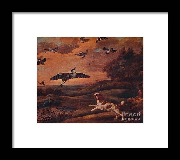 Plover Framed Print featuring the drawing Shooting Plover by Print Collector