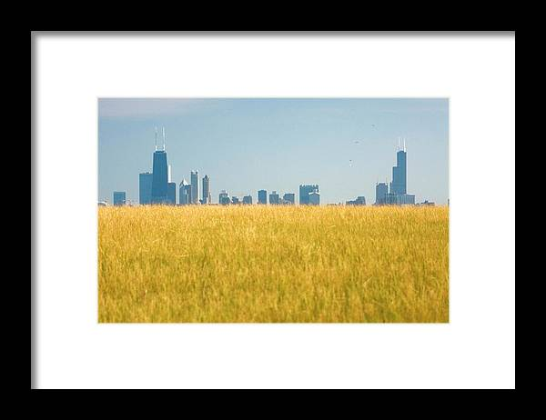 Grass Framed Print featuring the photograph Skyscrapers Arising From Grass by By Ken Ilio
