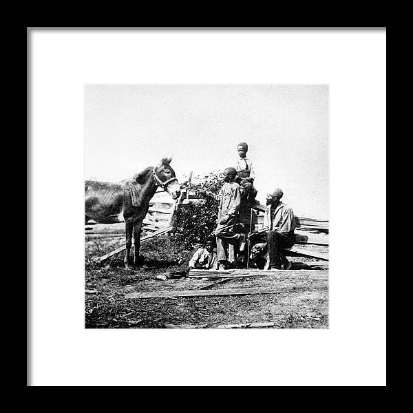 American Civil War Framed Print featuring the photograph Slaves by Archive Photos