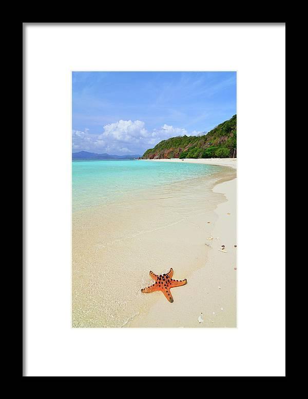 Water's Edge Framed Print featuring the photograph Starfish On Beach Sand by Joyoyo Chen