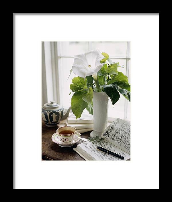 Vase Framed Print featuring the photograph Still Life by Richard Felber