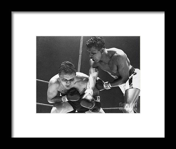 Conspiracy Framed Print featuring the photograph Sugar Ray Robinson Fighting Jake by Bettmann